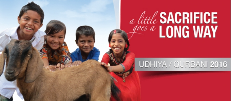 Zakat Foundation of America - Donate Your Udhiya/Qurbani Today