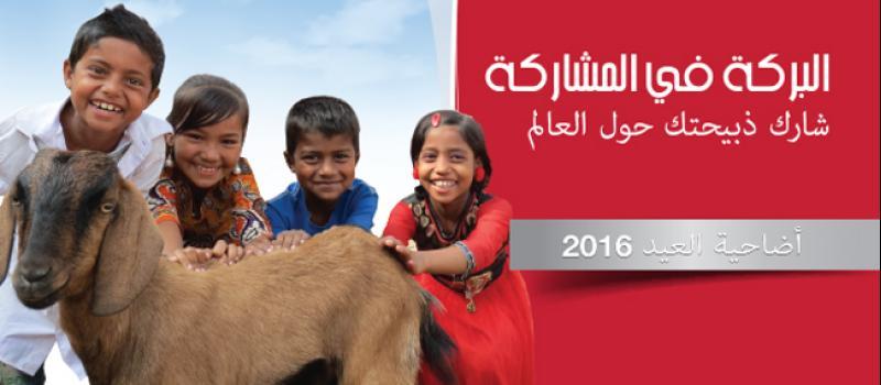arabic.zakat.org - البركة في المشاركة- شارك ذبيحتك مع العالم