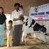 Zakat Foundation of America - Livestock Gift Gives Earning Power to Indian Mother and Family
