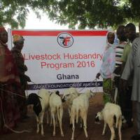 Zakat Foundation of America - Graphic Online: Zakat Foundation Launches Livestock Husbandry Project