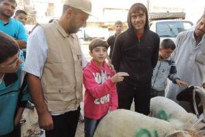 Zakat Foundation of America - 2013 Udhiya-Qurbani - Syria