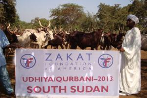 Zakat Foundation of America - 2013 Udhiya-Qurbani Highlights Part 2